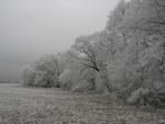 Winter Blues or Seasonal Affective Disorder?